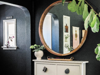A circular mirror with a wooden frame sits against a wall painted in black with a dresser underneath it and a green leaves from a tall plant framing it.